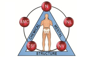 Applied kinesiology and thyroid issues